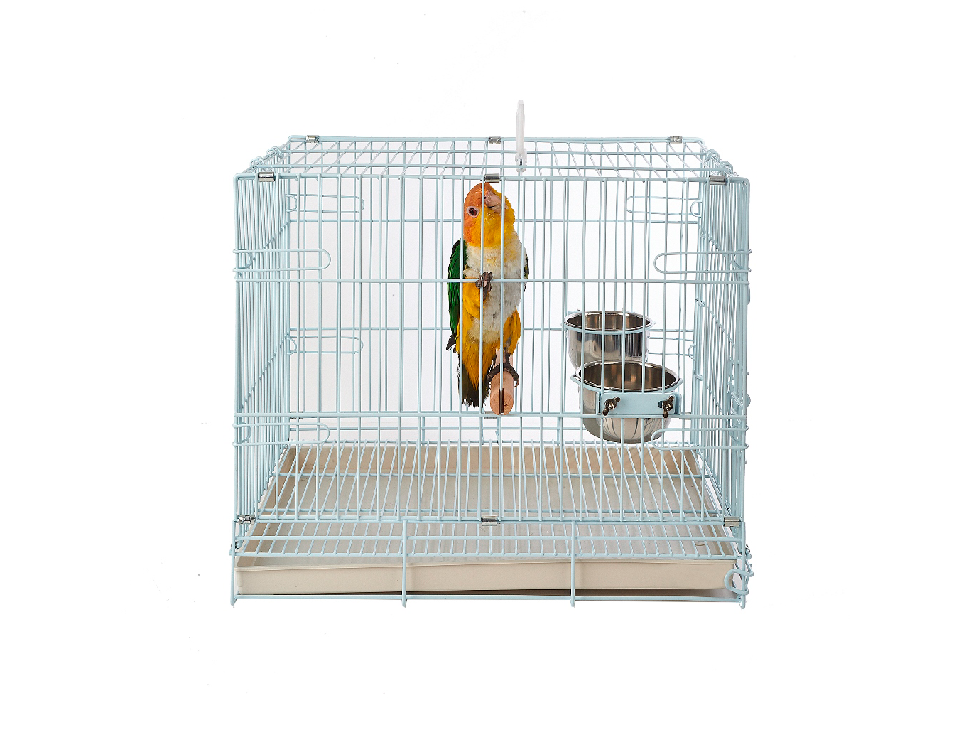 mp-small-carry-cage-1